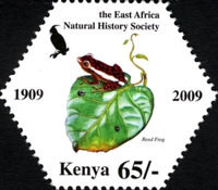 [East Africa Natural History Society, Typ AEX]