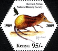 [East Africa Natural History Society, Typ AEZ]