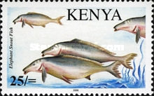[Fish of Lake Victoria, type XDA]