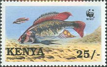 [Worldwide Nature Protection - Lake Victoria Cichlid Fish, Typ ZX]