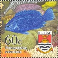 [Tropical Fish, type RM]