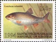 [Fish, type AT]