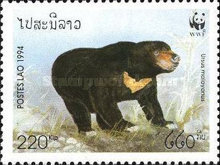 [The Malay Bear, Typ BBK]