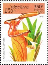 [Insectivorous Plants, Typ BDW]