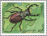 [Insects, Typ BEA]
