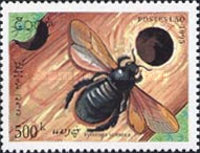 [Insects, Typ BEC]