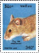 [New Year - Year of the Rat, Typ BFG]