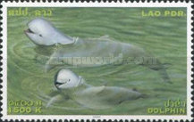[Endangered Species - Irrawaddy Dolphins, Typ BUO]