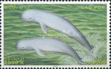 [Endangered Species - Irrawaddy Dolphins, Typ BUP]