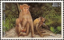 [Chinese New Year - Year of the Monkey, Typ BUR]
