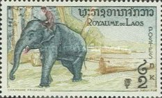 [Laotian Elephants, type BY]