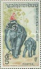 [Laotian Elephants, type BZ]