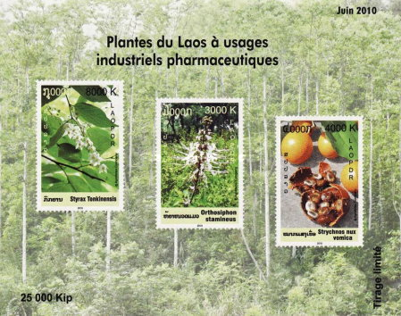 [Medical Plants, Typ CEH]