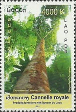 [International Year of Forests, type CGC]