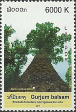 [International Year of Forests, type CGE]