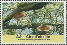 [International Year of Forests, type CGG]