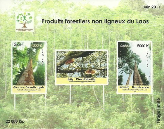 [International Year of Forests, Typ CGH]