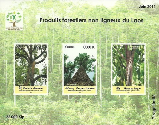 [International Year of Forests, Typ CGI]