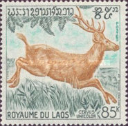 [Wild Animals, type LJ]