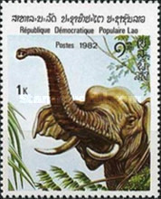 [Indian Elephant, type TD]