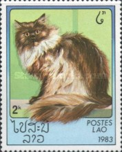 [Domestic Cats, Typ ZH]