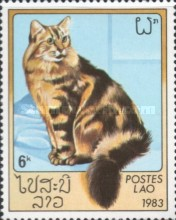 [Domestic Cats, Typ ZL]