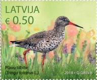 [Latvian Birds, Typ AEL]