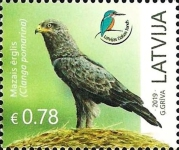 [Birds - Latvian Nature Foundation, Typ AFV]