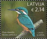 [Latvian Birds, Typ AGU]