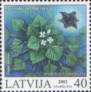 [Protected Plants of Latvia, Typ MD]