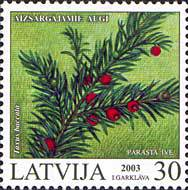 [Protected Plants of Latvia, Typ MV]