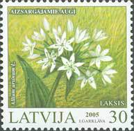 [Protected Plants of Latvia, Typ ON]