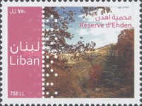 [Ehden Nature Reserve, Typ AGM]
