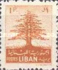 [Cedar of Lebanon,  Baalbek and Beaufort, Typ XDK1]