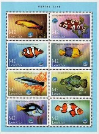 [International Year of the Ocean - Fish from Sea and Freshwater, Typ ]