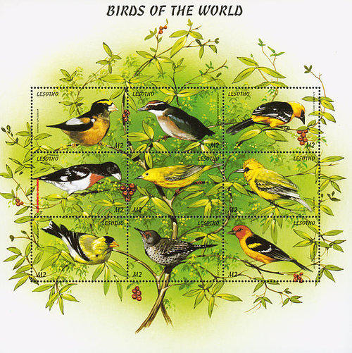 [Birds of the World, Typ ]