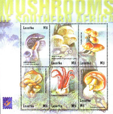 "[International Stamp Exhibition ""BELGICA '01"" - Brussels, Belgium - Mushrooms of South Africa, type ]"