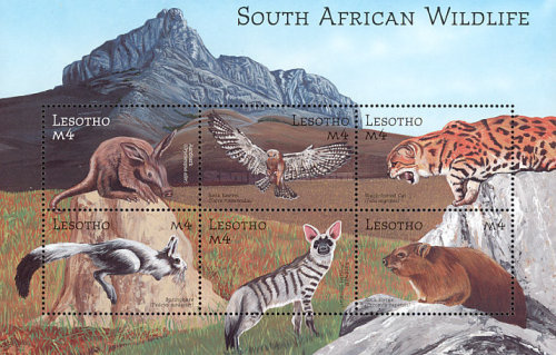[Fauna of South Africa, Typ ]
