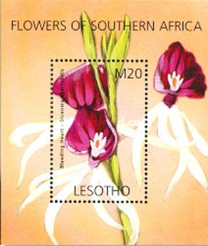 [Flowers of South Africa, Typ ]