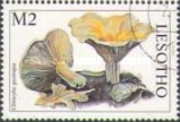 [Mushrooms of the World, Typ AWB]