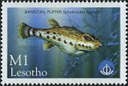 [International Year of the Ocean - Fish from Sea and Freshwater, Typ AYT]