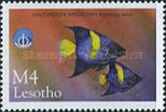 [International Year of the Ocean - Fish from Sea and Freshwater, Typ AZD]