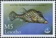 [International Year of the Ocean - Fish from Sea and Freshwater, type AZE]