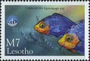 [International Year of the Ocean - Fish from Sea and Freshwater, Typ AZG]