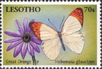 [Butterflies from Around the World, type BLX]