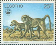[Worldwide Nature Protection - Endangered Animal Species, type HM]