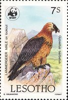 [Global Nature Conservation - Bearded Vulture, Typ TO]