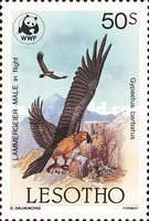 [Global Nature Conservation - Bearded Vulture, Typ TQ]