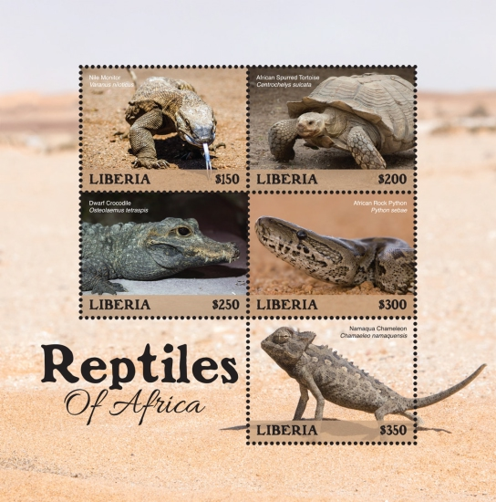 [Reptiles of Africa, type ]