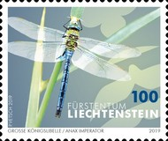 [Insects - Dragonflies, Typ BZC]